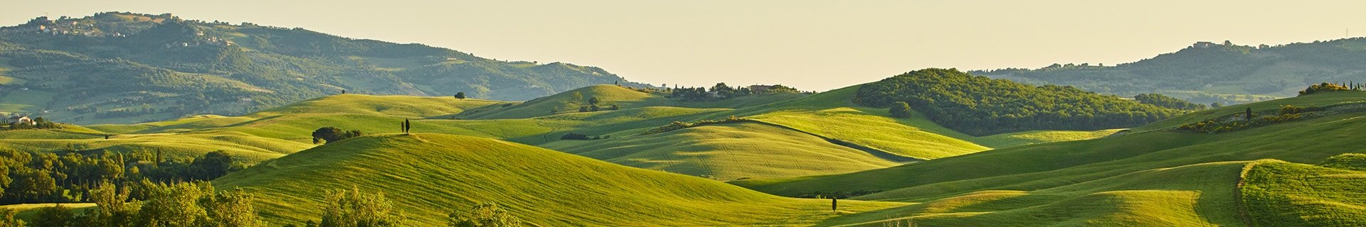 Green farmland and forests on rolling hills